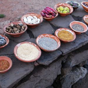 herbs, spices, vegetables from an Andean farm. There were no hospitals nearby, so medicinal plants were gathered.