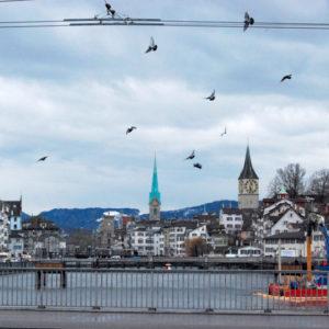 Zurich, Switzerland - photography by Jenny SW Lee
