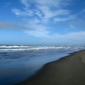 Shores of a Willowbank beach.