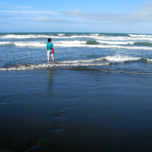 My fellow nature conservation volunteer wading in a Willowbank beach.