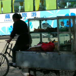A woman making her living, cycling along the streets with a large food cart. Her bicycle juxtaposed with that of the more advanced form of transportation, a bus.