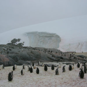 Petermann Island Antarctica - photography by Jenny SW Lee