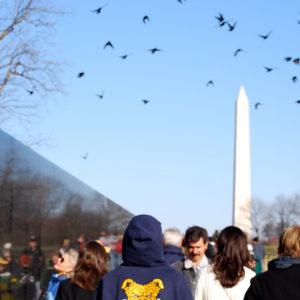 Vietnam Veterans Memorial in Washington DC - photography by Jenny SW Lee