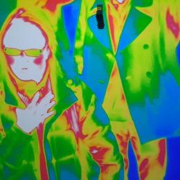 #SelfieScience Infrared Cameras