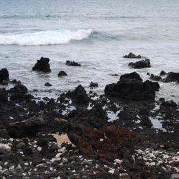 La Perouse Bay