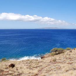 Maui Hawaii - photography by Jenny SW Lee