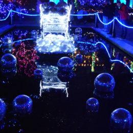 VanDusen Festival of Lights   Jenny S.W. Lee Photography