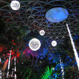 Bloedel Floral Conservatory in Queen Elizabeth Park during the holiday season