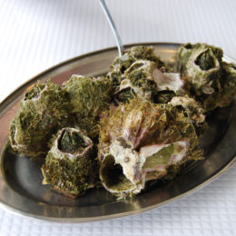 Cracas barnacles in Cais 20 restaurant in Sao Roque