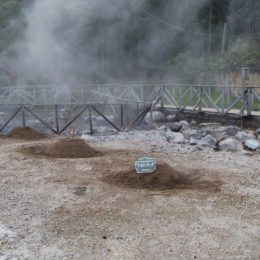 This is where they cook cozido das Furnas. The restaurant Miroma, where we dined, had their underground oven reserved.
