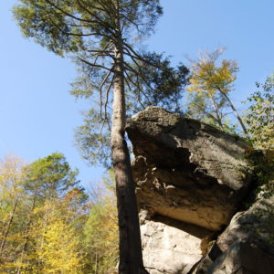 Purgatory Chasm State Reservation - photography by Jenny SW Lee