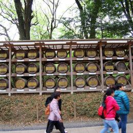 Yoyogi Park, Tokyo Japan | Photography by Jenny S.W. Lee