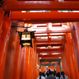 Fushimi Inari Taisha - Shinto Shrine | Photography by Jenny S.W. Lee