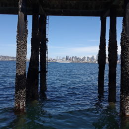 At the Alki beach dock waiting for water taxi back to downtown Seattle.
