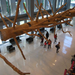 """John Grade: Middle Fork. """"Suspended sculpture of a 140-year-old western hemlock. Built from thousands of pieces of reclaimed old-growth cedar."""""""