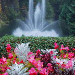 Butchart Garden in Brentwood Bay, British Columbia, Canada | Photography by Jenny S.W. Lee