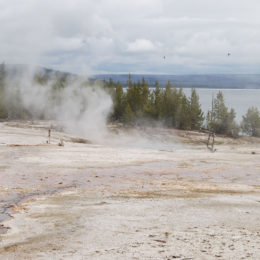 West Thumb Geyser Basin | Yellowstone National Park | Photography by Jenny S.W. Lee