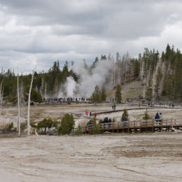 Old Faithful | Upper Geyser Basin | Yellowstone National Park | Photography by Jenny S.W. Lee