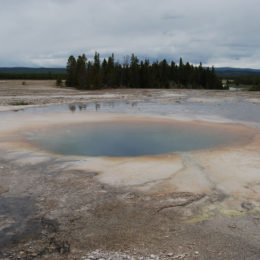 Grand Prismatic Hot Spring | Midway Geyser Basin | Photography by Jenny S.W. Lee