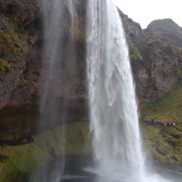 Seljalandsfoss Waterfall, Iceland | Jenny SW Lee