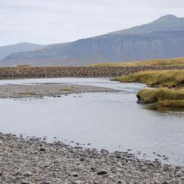 Mt. Kirkjufell, Iceland | Jenny SW Lee