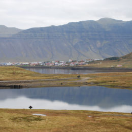 Near Mt. Kirkjufell, Iceland | Photography by Jenny SW Lee