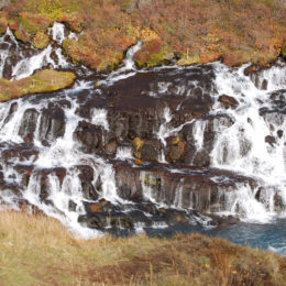 Hraunfossar Waterfall in Iceland | Jenny SW Lee