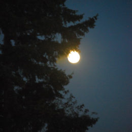 October 30, 2020 - the day before the Full Moon and Halloween