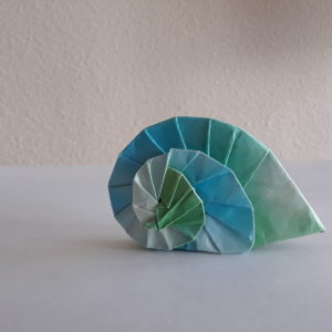 Navel Shell | Design by Tomoko Fuse